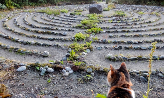 Karen L Nelson individual and couples counseling believe life is like a labyrinth.